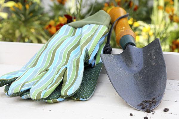 buying gardening gloves.jpg