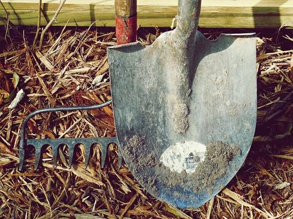 bow rake.jpg