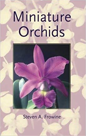 miniature orchids frowine.jpg