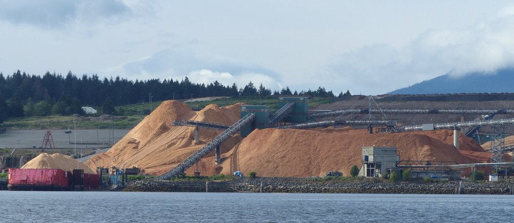 Nanaimo pulp mill waste sawdust - a perfect source for producing drop-in Renewable Diesel (Photo by P. Wilcox)
