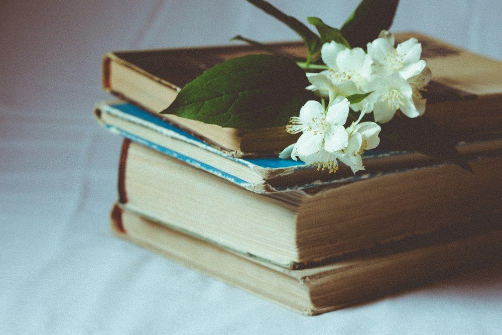 The Best Books I Read in 2017 | www.mia-sutton.com