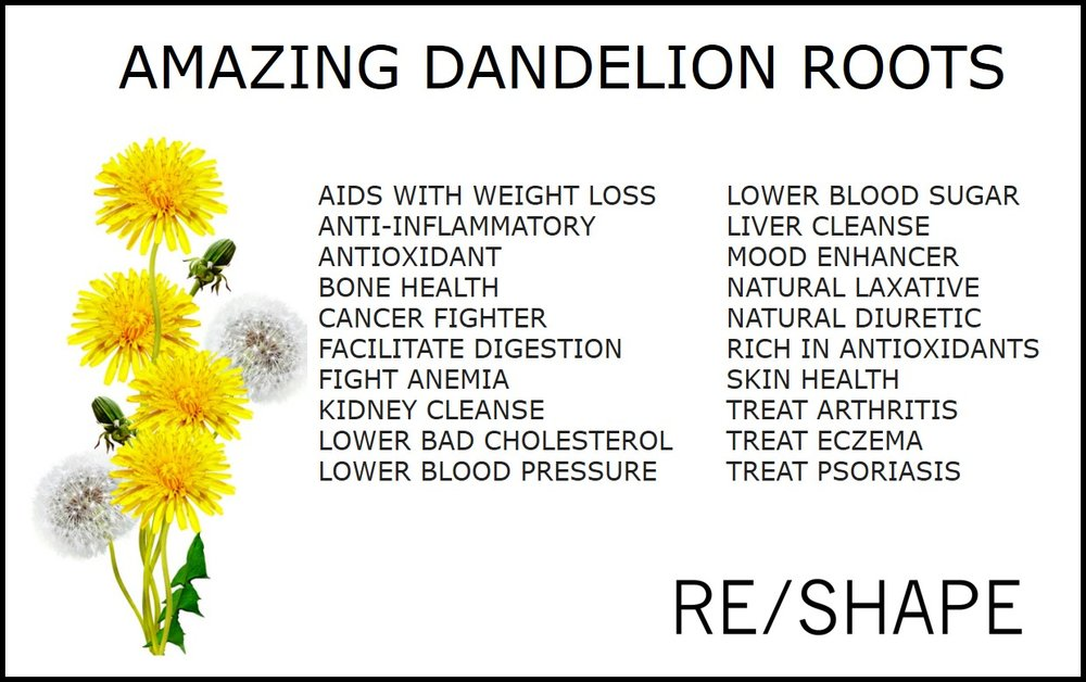 Have you heard about Dandelion Root tea?  The health benefits are excellent and it is worth having a few cups every week. I will steep the tea and drink a cup while hot and then chill the remainder to use as a liquid base for smoothies during the week.