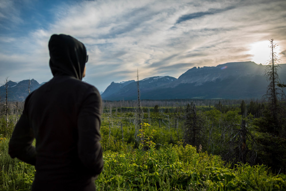 wildfire-fueled deforestation in Glacier National Park — clearly visisble and depressing