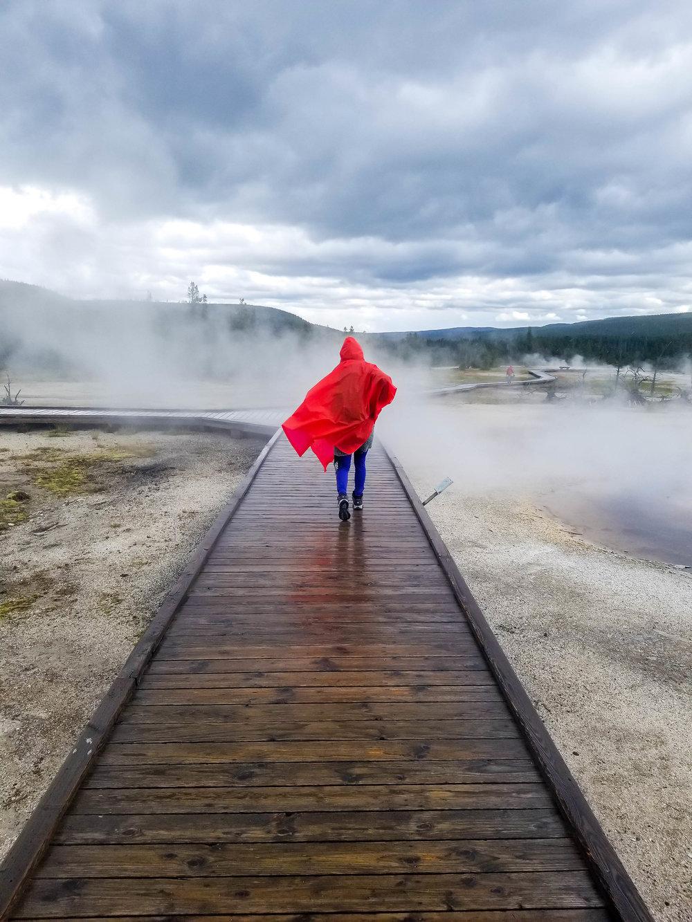 Geyser Basin in Yellowstone National Park