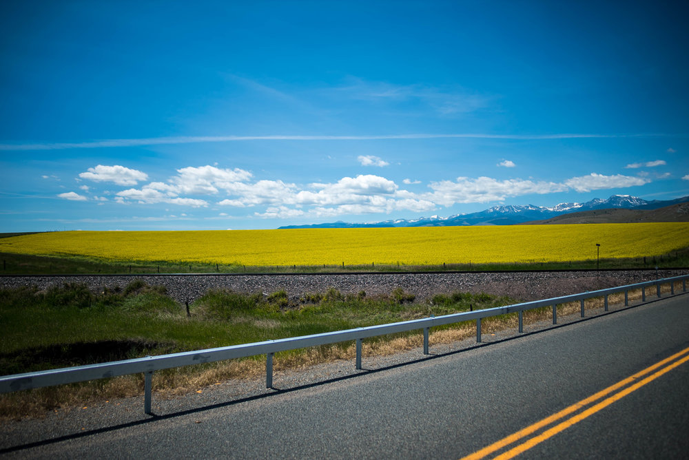 the drive from Calgary to Yellowstone is loaded with endless miles of rolling prairie