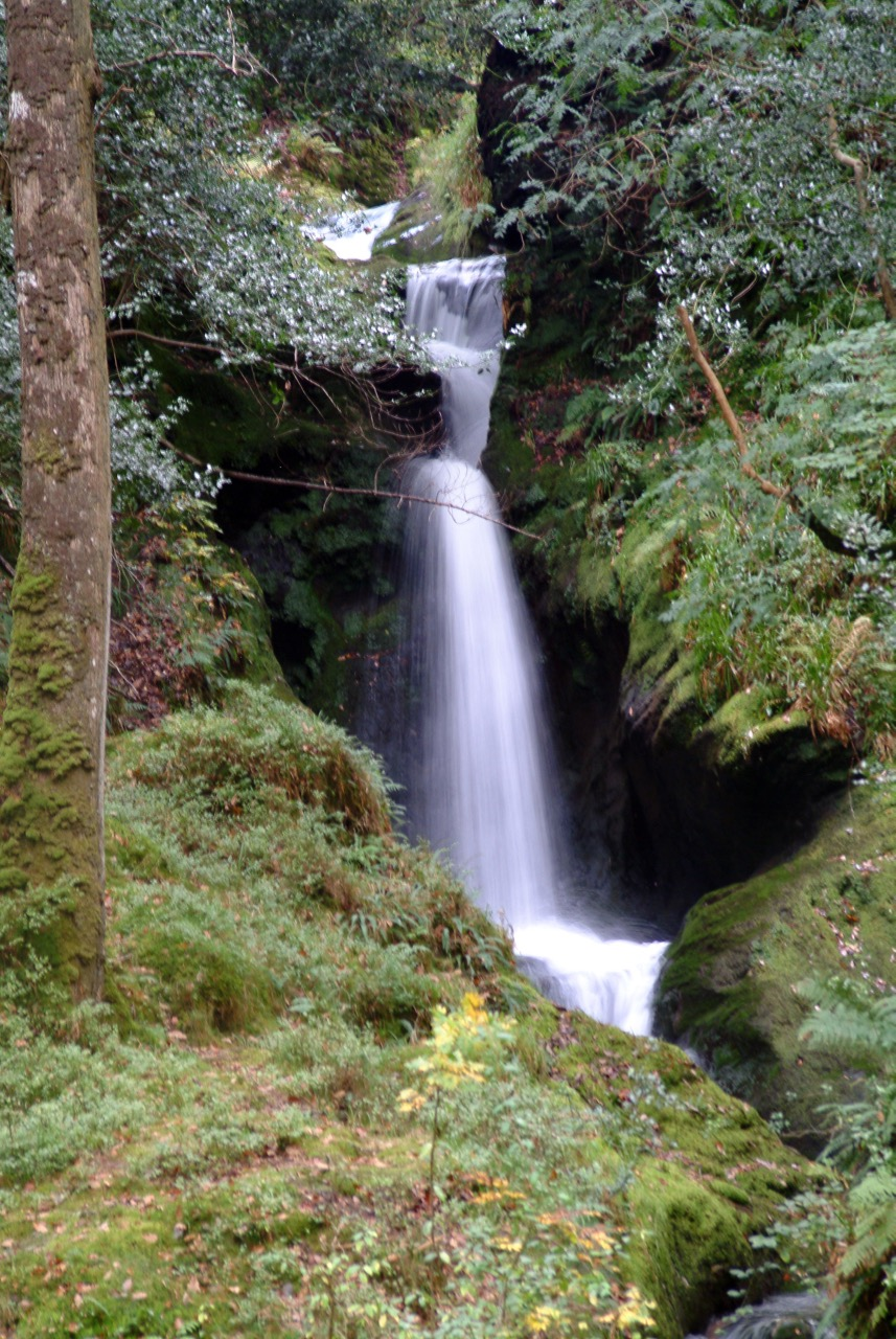 Waterfall in Wicklow Mountains Nat'l Park