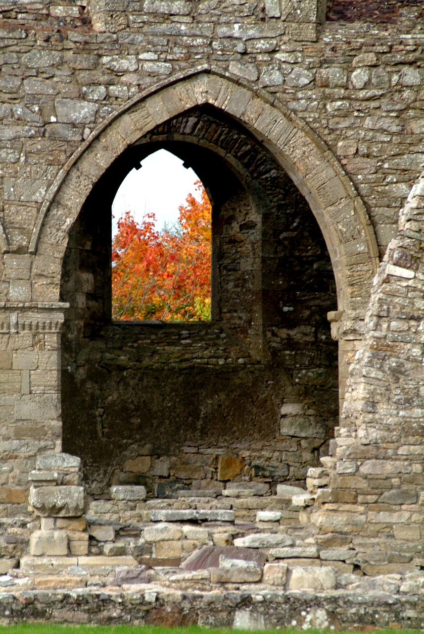 I love this shot of the abbey ruins with the brilliant orange leaves.