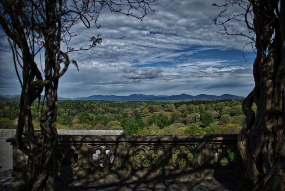 View from the wisteria portico
