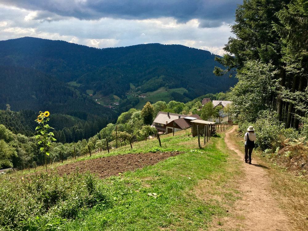 Melissa hiking