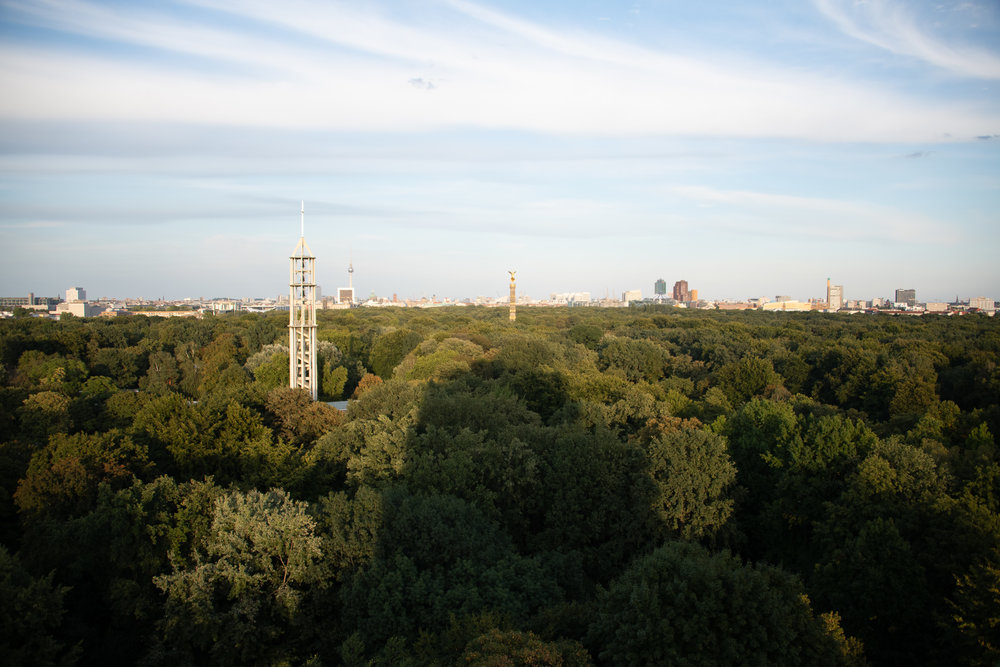 The view over the Tiergarten from our 14th floor AirBnB