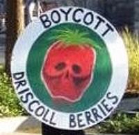 Boycott Driscoll Barries.jpg