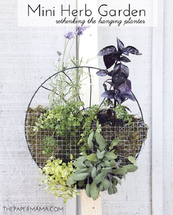 1. 17 Hanging Herb Garden Ideas for Small Spaces!  - Balcony Garden Web