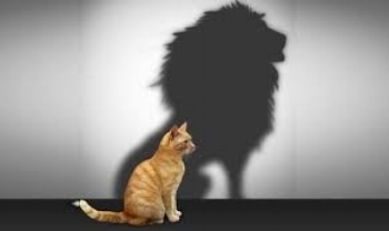 cat lion.jpg