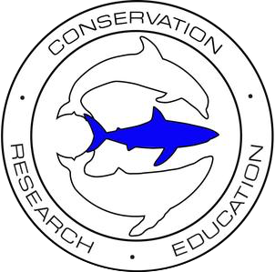 OneOceanDiving & Research - OneOceanDiving's ongoing correlation studies look at shark movements by species, gender, depth profile, and season. Baseline information for individual animals is recorded, and new sharks are added to their photo ID program. The Shark ID program significantly reduces the need for tagging to determine site fidelity and assists in accuracy of survey counts. OneOceanDiving has over 200 sharks in their ongoing photo ID database. Deep water camera systems (up to 500 feet) are deployed to study shark movements at every depth at survey sites. OneOceanDiving is also unique in that it allows people the opportunity to get in the water and free dive with sharks face to face in an effort to change any preconceived notions people may have about sharks.
