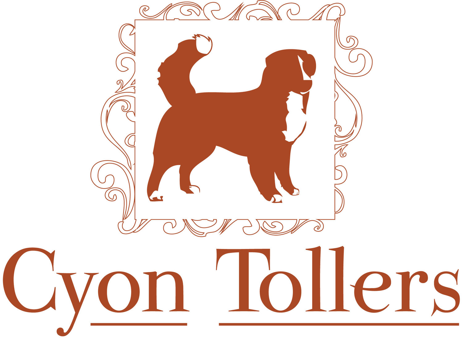 Cyon Duck Tollers