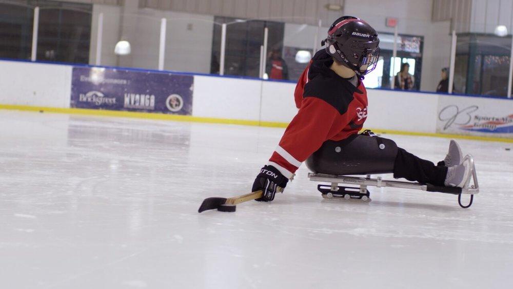 Sled Hockey 5.jpg