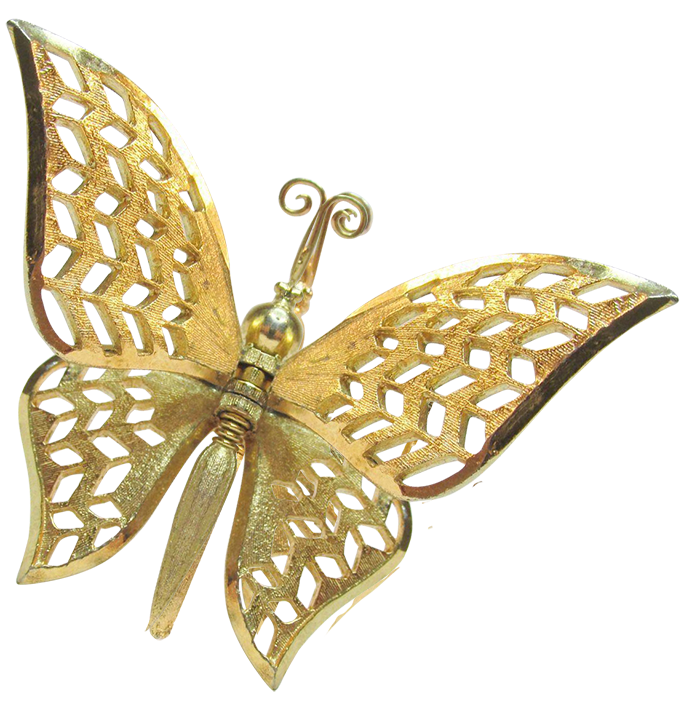 Butterfly Pin.png