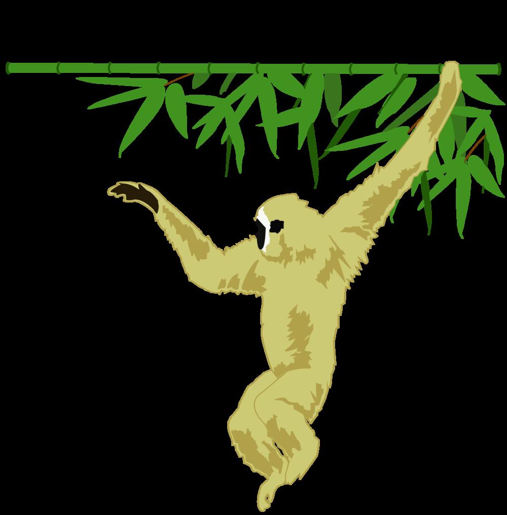 Gibbon SSP.png