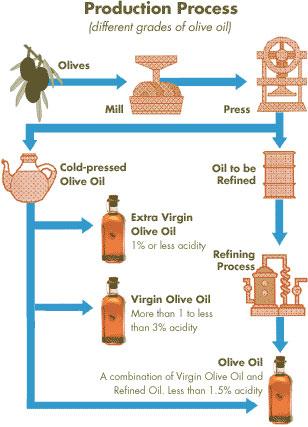 oilveoil3.jpg