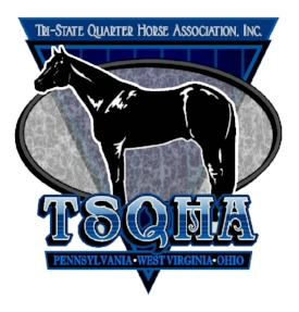 New TSQHA logo.jpg