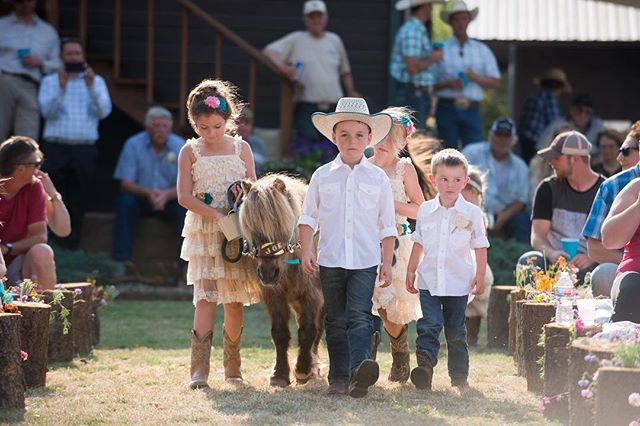 It's not everyday that I get to shoot a pony getting escorted down the aisle by a bunch of cute kids.