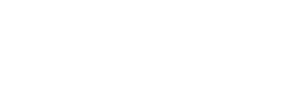 Project Hud;Son
