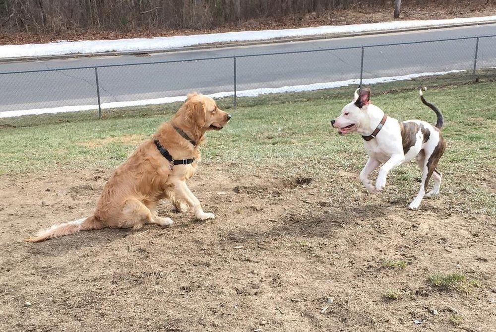 Riley & Harper