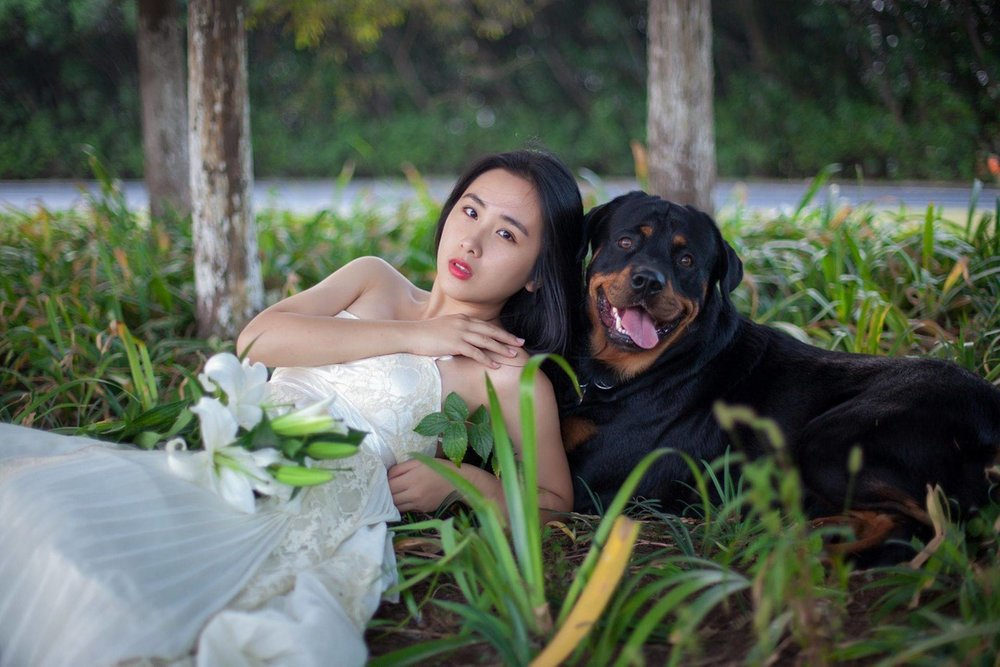 bride%20and%20rotti.jpg