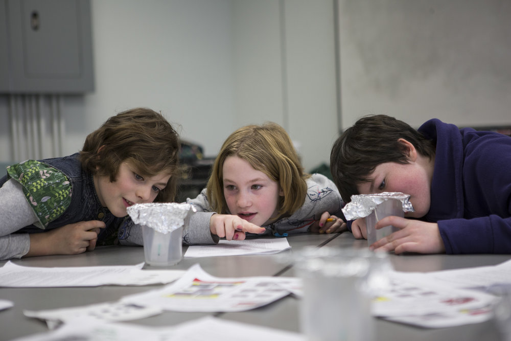 """From left to right: Emma DeCicco, Brianna Jecklin and Charlie Fox use chromatography to compare the distance wet ink from two separate markers travels to determine which marker might have been used in a """"ransom"""" note."""