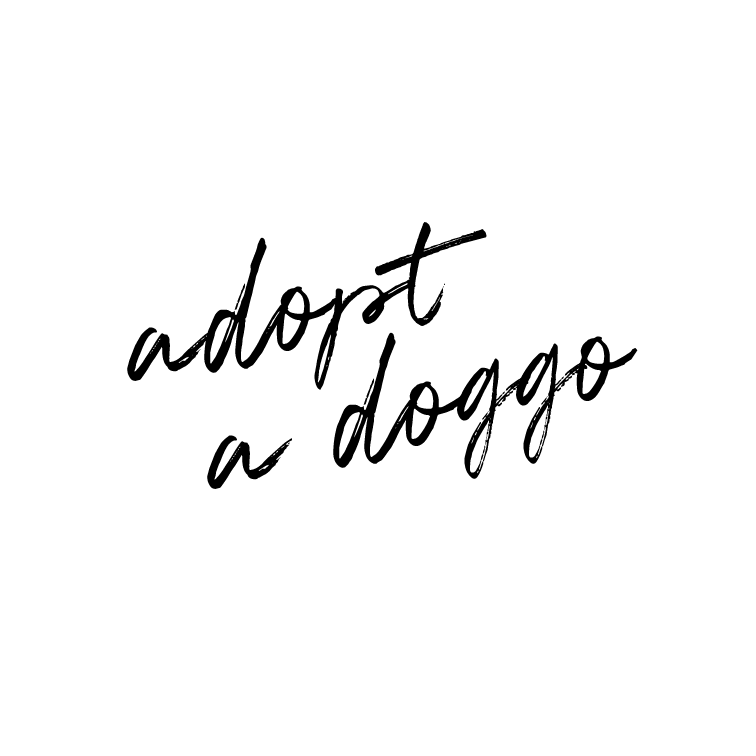 Adopt a doggo.   Doggos and puppers rule ALL! This one has been in the works for a few months, and we can't wait to rescue a sweet doggo (older dogs) or pupper (little puppy) and welcome him/her into our home and our family.