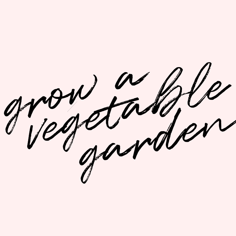 Grow a vegetable garden.   We eat so many veggies in a week's time that it only makes sense to grow some. Can you blame a girl for wanting a green thumb?