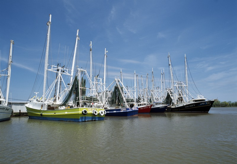 Louisiana_shrimp_boats,_Grand_Isle,_Louisiana_LCCN2011635814.tif.jpg