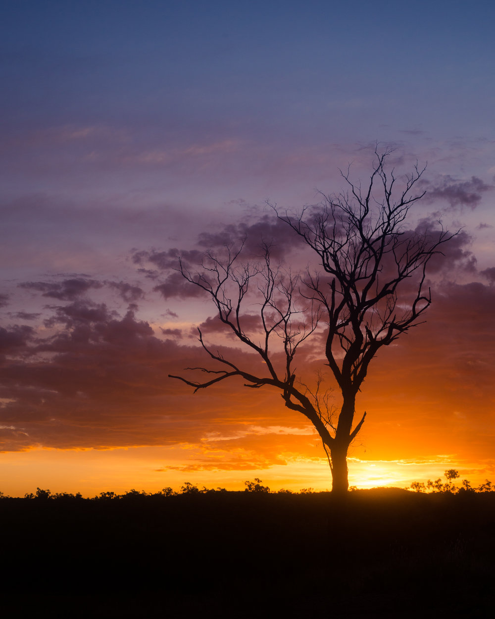 Lanscapes - North - Queensland - Rural - Sunset.jpg