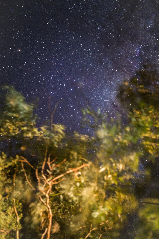 Outdoor-landscape-north-queensland-outback-13.jpg