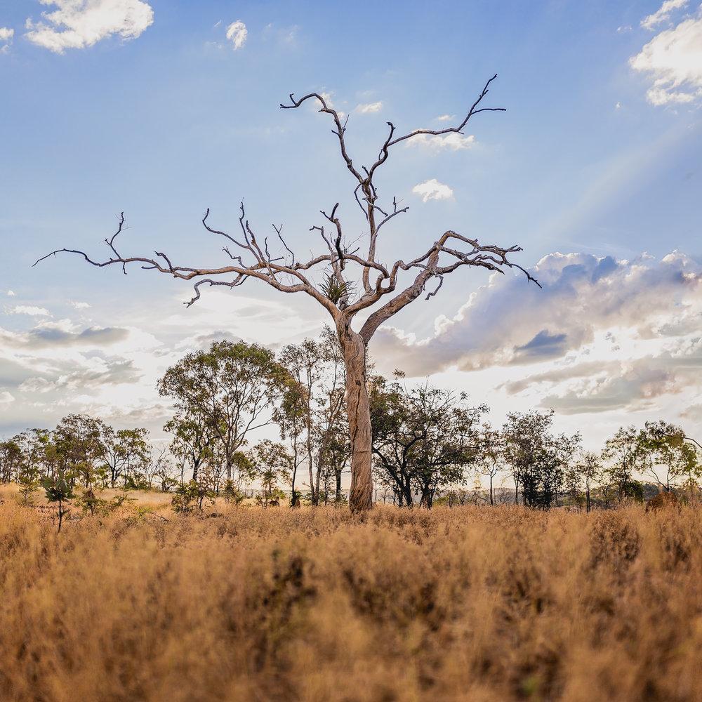 Outdoor-landscape-north-queensland-outback-6.jpg