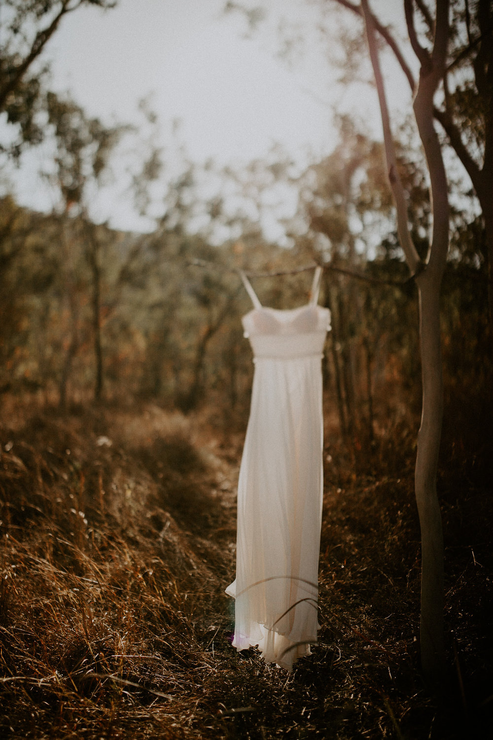 Camilla French Family Maternity Wedding Engagement Couple Newborn Lifestyle Photographer Townsville North Queensland-9.jpg