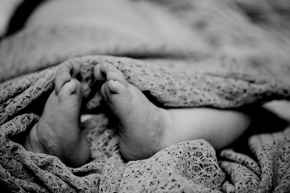 landis newborn-4712.jpg