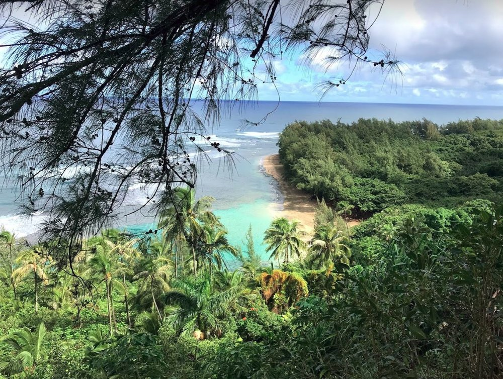kauai beach 17.JPG