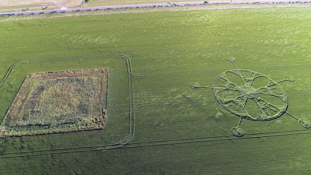 Crop circle near the road to Stonehenge. Image courtesy of Paul Deeman