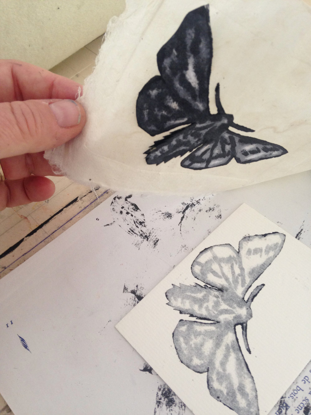 Pulling a monoprinted moth print in Isis's studio.