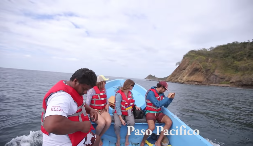 Saving Nicaragua's Sea Turtles - I joined Paso Pacifico on the coast of Nicaragua to see what it takes to protect sea turtles as they lay their eggs.