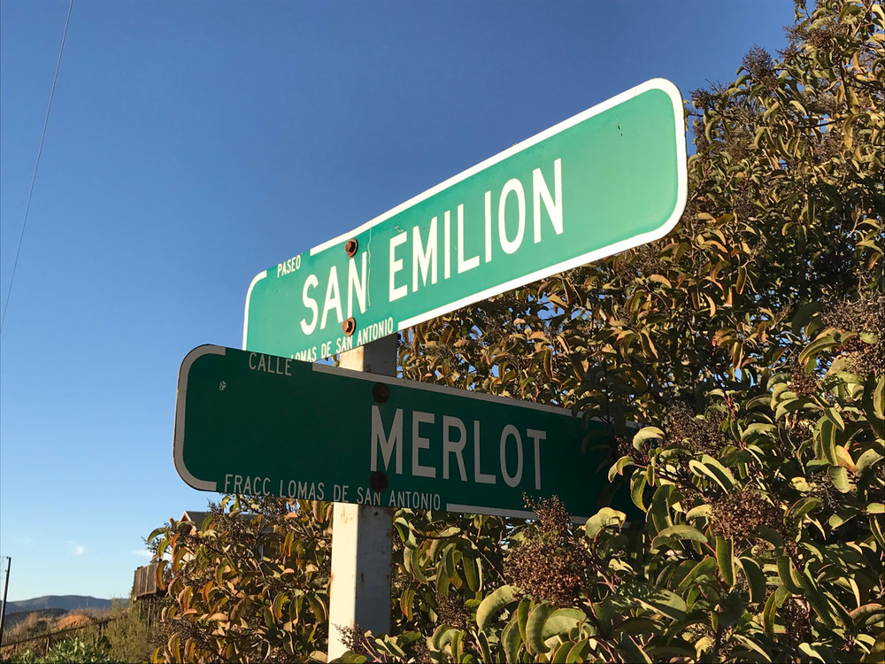 The region is embracing its wine identity.