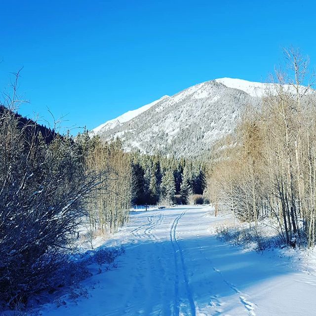 Colorado Winter Wonderland #BVBackcountry #GoThereStartHere #BuenaVistaCO