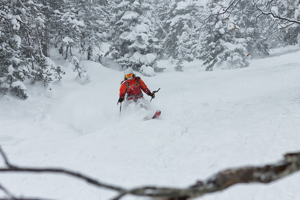 Woman skier free rider goes down on powder snow in the mountains