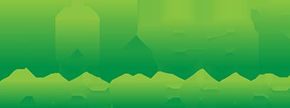 nlv-logo.png