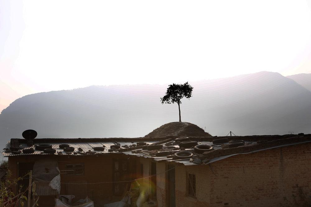 Nepal.choice01.jpg