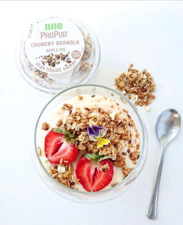Vihmase päeva teeb rõõmsamaks Nije puding õunakoogimaitselise granolaga 💚 #njieeesti #vanilla #pudding #proteinpudding #feedyourcravings #nije #njiepropud #propud #propudding #applepie #granola