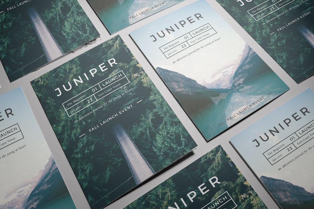 Brochure - Juniper