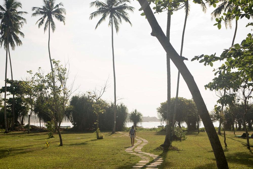 Sr Lanka yoga holiday with Yoga Explorers
