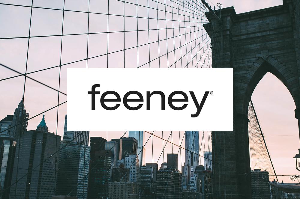 Feeney Case Study